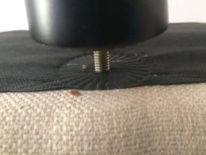 bed bugs on an office chair